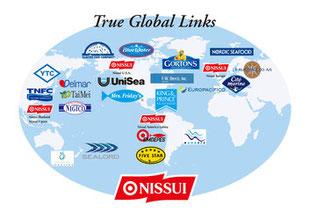 ニッスイ 強み グローバル